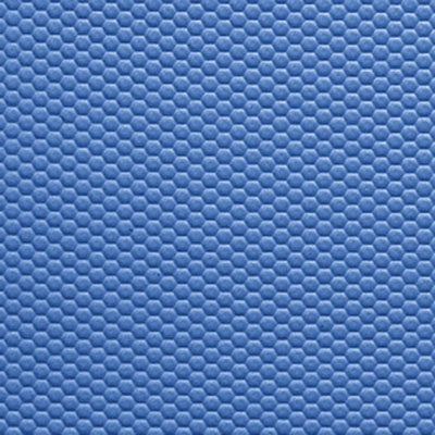 FitZone Mats Pro Blue